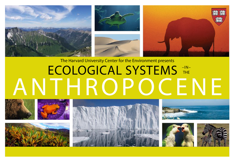 """Ecological Systems in the Anthropocene Series: """"Can Conservation Biology Survive the Anthropocene?"""""""