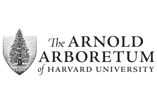 Volunteer at the Arnold Arboretum!