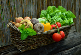 Marin Master Gardeners: Fall-Winter Vegetable Gardening