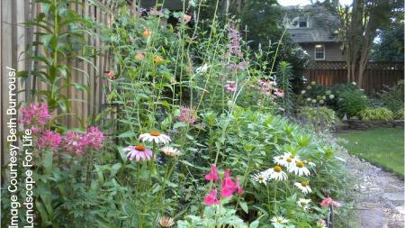 UW Botanic Gardens: Landscape for Life - Sustainable Home Gardening