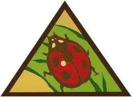 Girl Scouts Brownie Bugs Badge Workshop