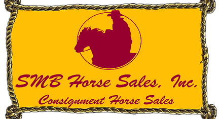 SMB Using Horse Sale