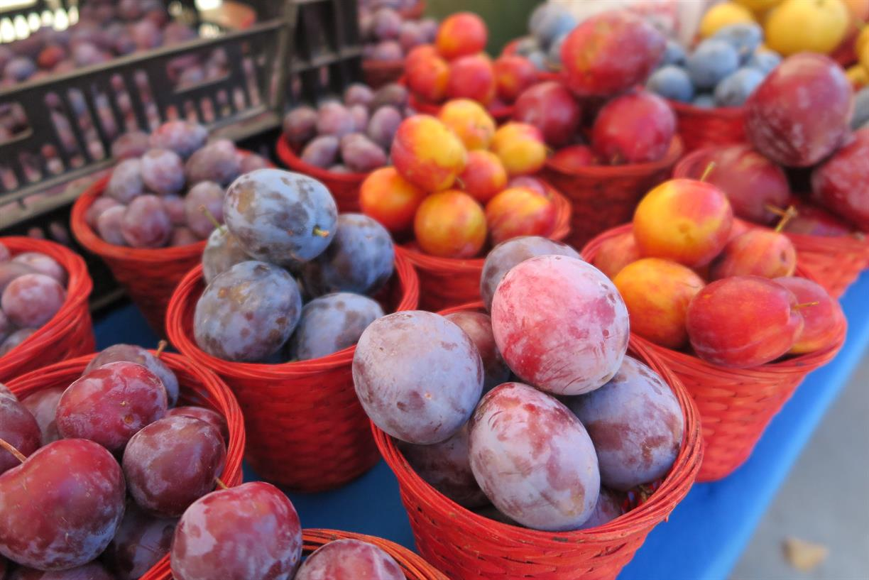University of Utah Farmers Market