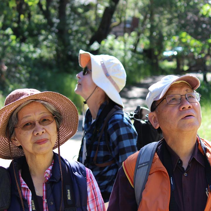 Senior Stroll on the Coast Trail