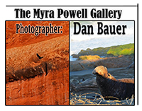 Dan Bauer Photography Exhibit runs thru June 27th