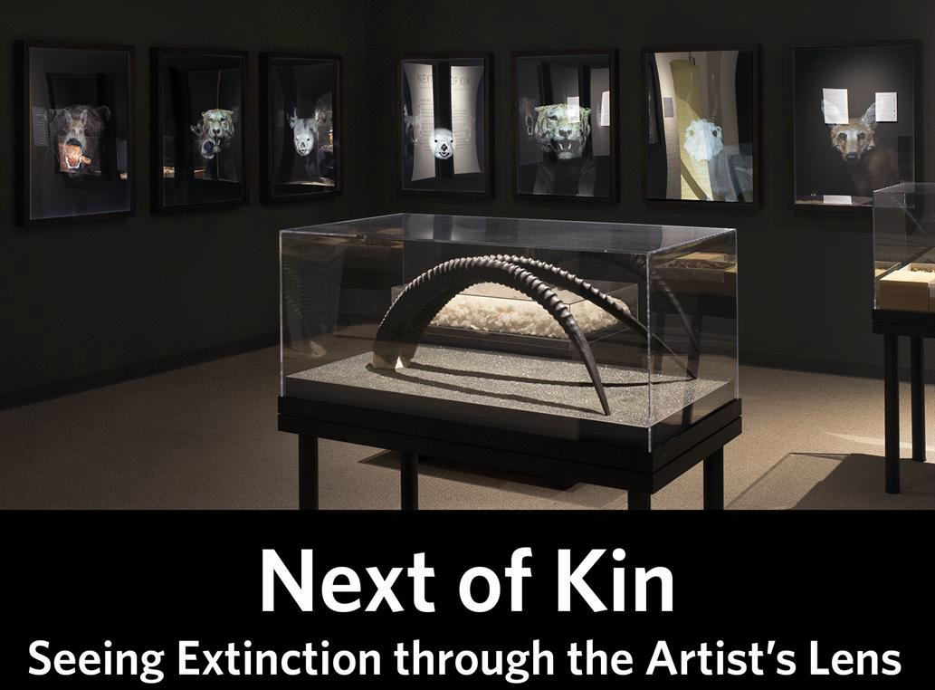Next of Kin: Seeing Extinction through the Artist's Lens