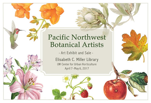 Art Exhibit: PNW Botanical Artists