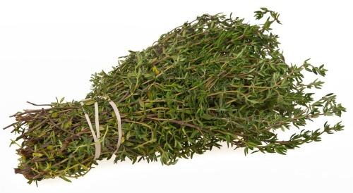 UW Botanic Gardens: Culinary Herbs
