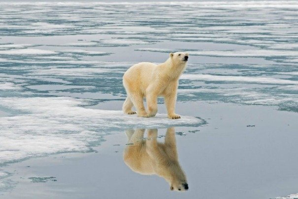 Lecture: Climate Change Beyond Environmentalism