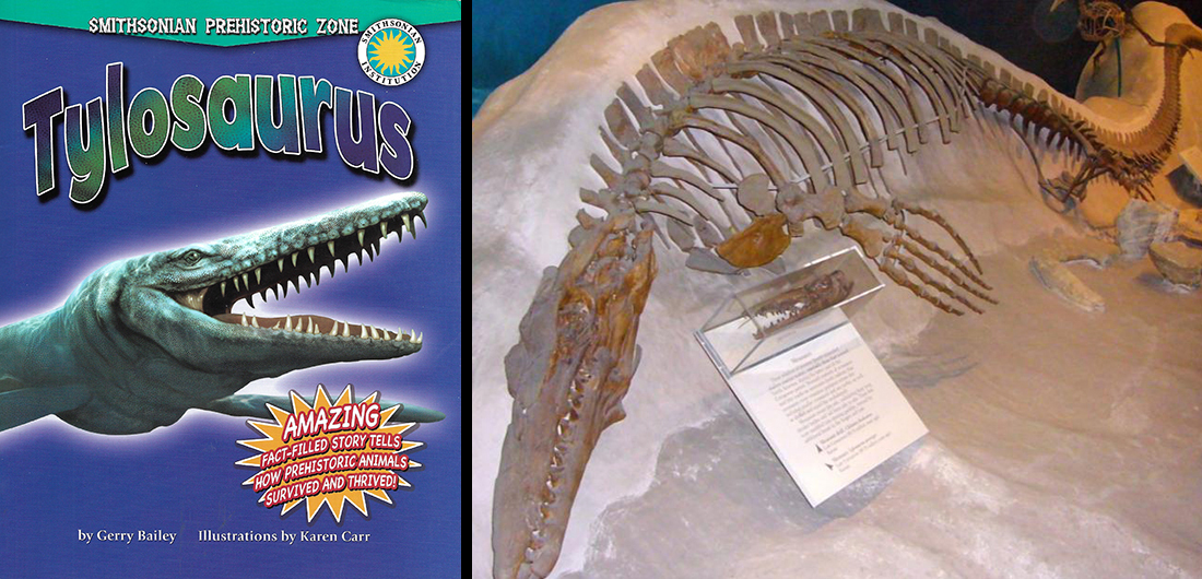 Video Webinar for Families: Natural History at Home - Tylosaurus Storytime