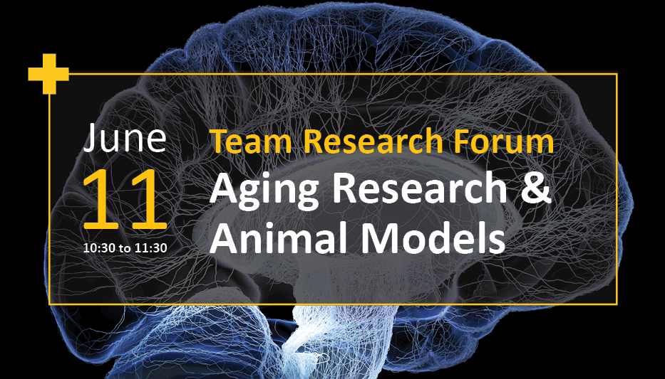 Team Research Forum: Aging Research and Animal Models