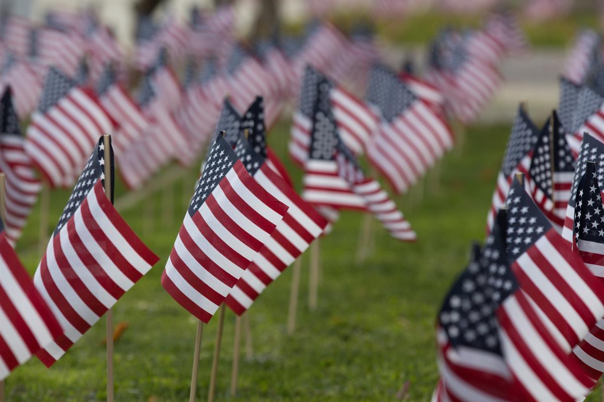 Veterans Day Flag Planting