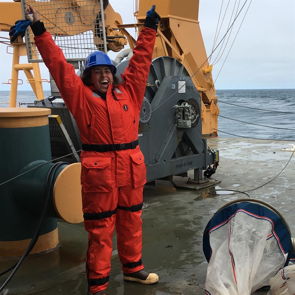 The Expert Is In: Arctic Zooplankton: The Ocean's Mini Battery Packs