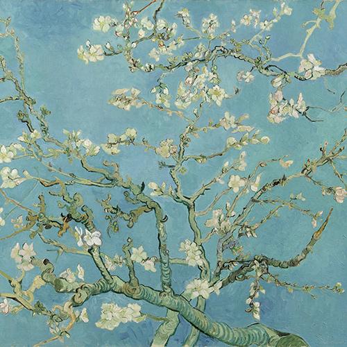 Spring's Awakening: A Reflective Writing Workshop