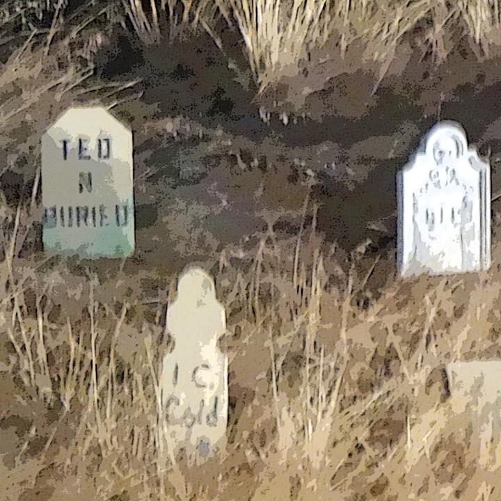 CANCELED - Graveyard Stroll