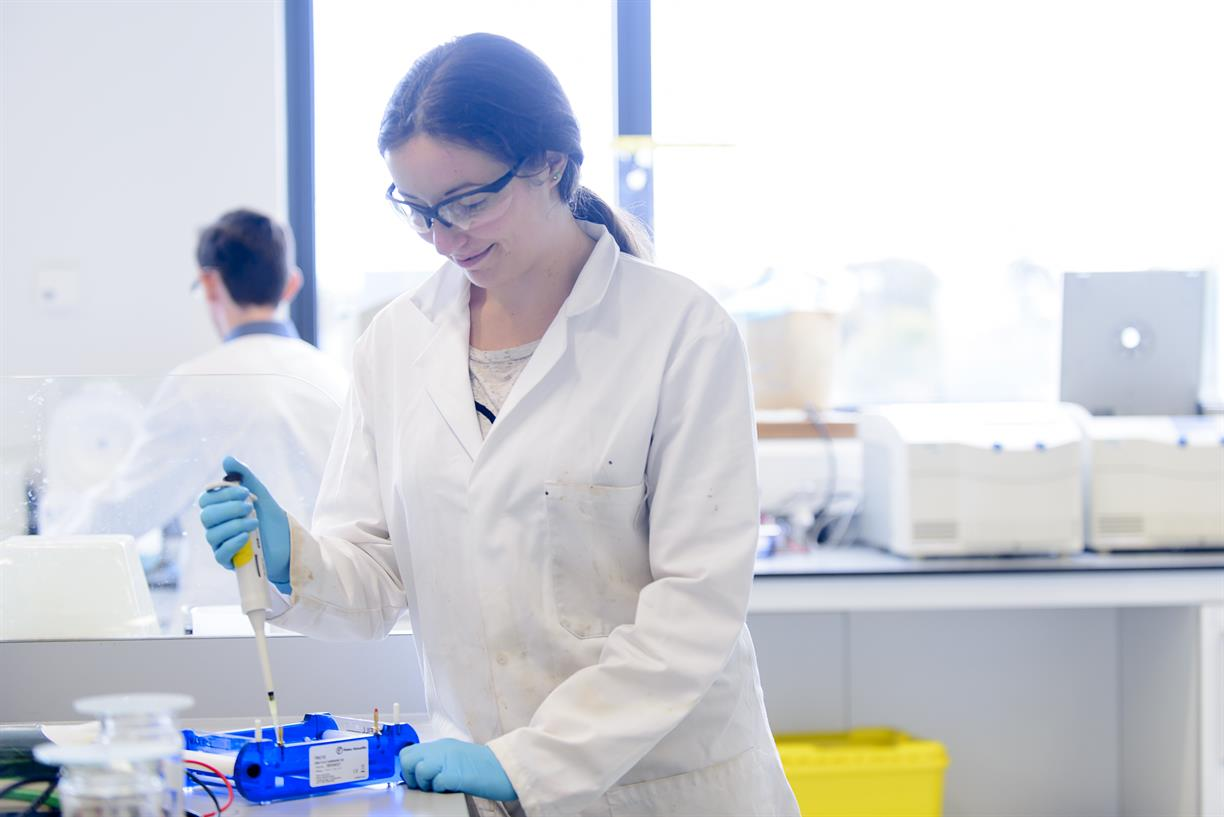 Undergraduate Research Opportunities in Germany