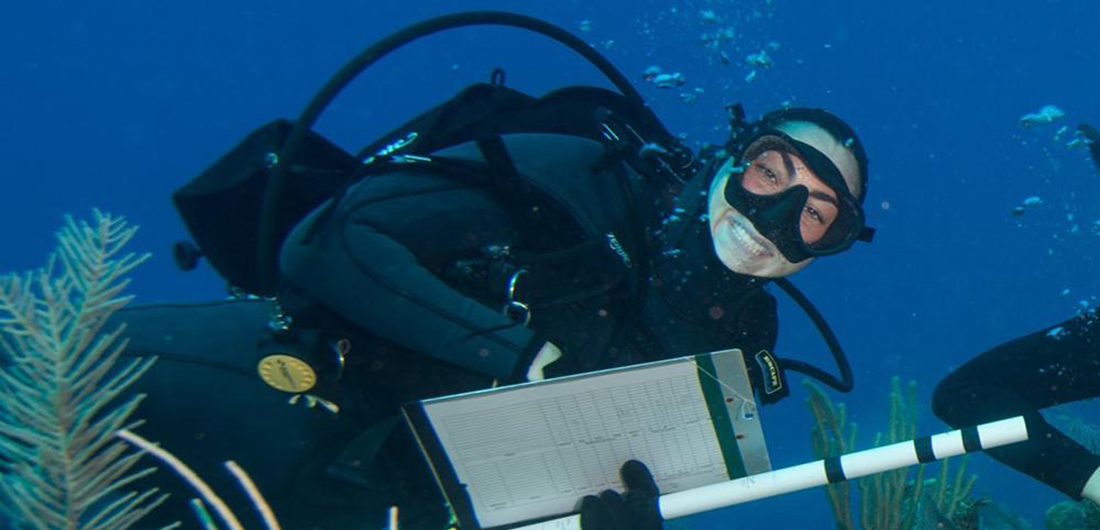 Tracking Coral Health in the Caribbean Sea