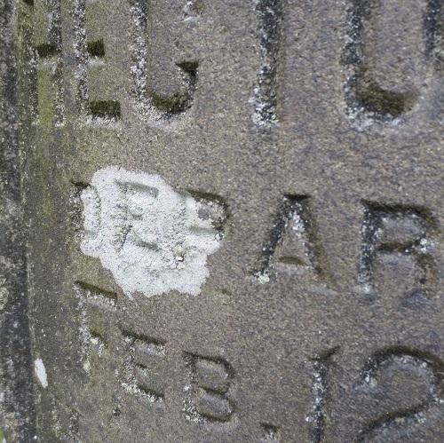 Cemetery Lichens Tour (in-person)