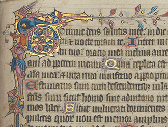 Beyond the Book of Kells: An Illuminated Psalter and Hours