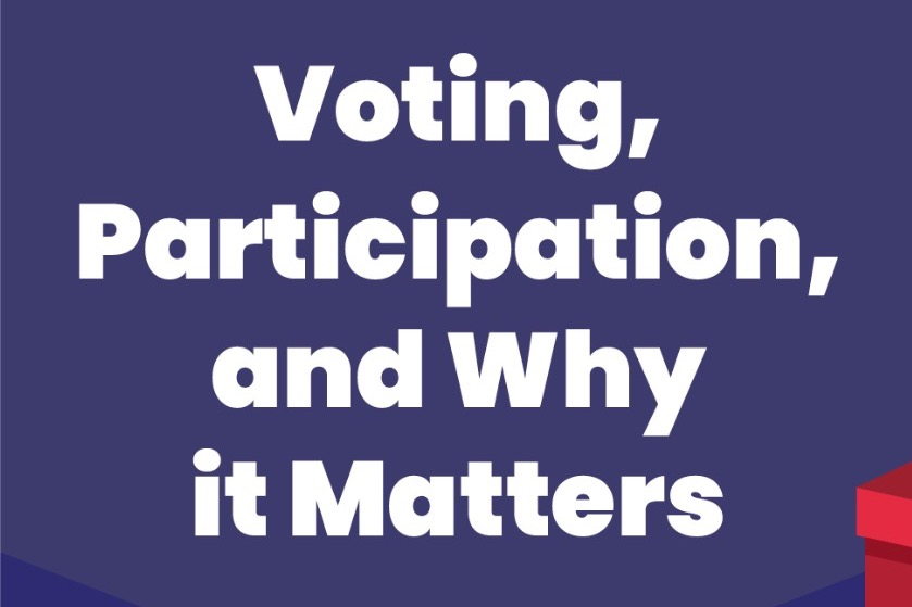 Voting, Participation, and Why it Matters