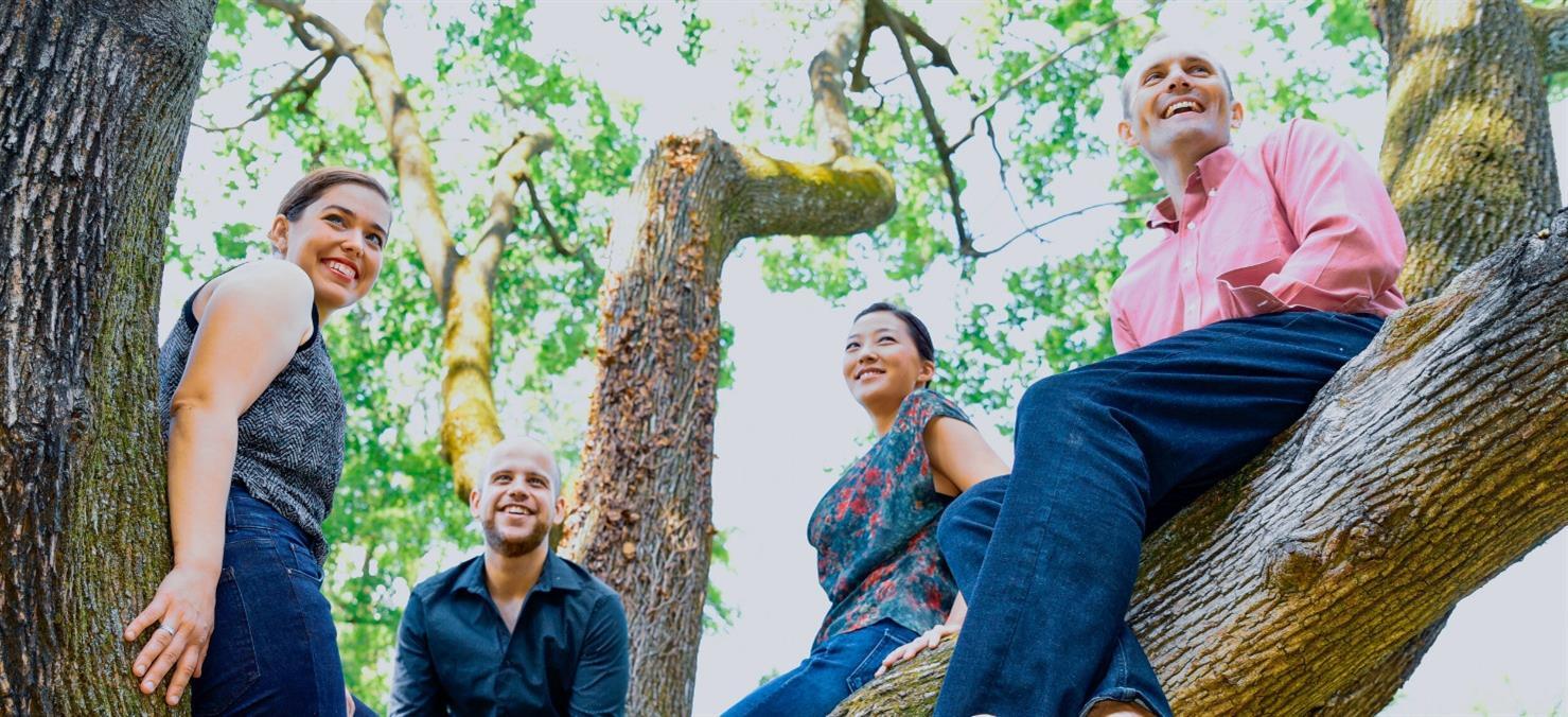 Jasper Quartet: Music for the Cherry Blossom Festival