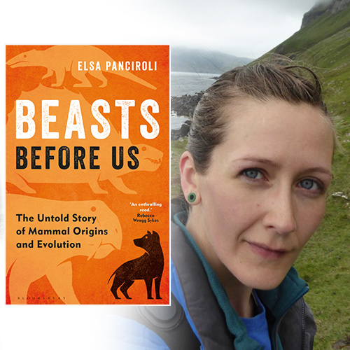 The Beasts Before Us: The Untold Story of Mammal Origins