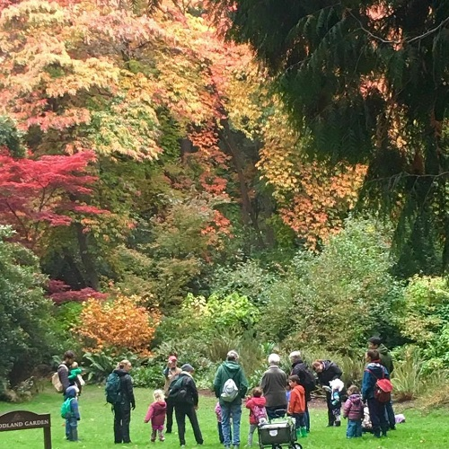 Family Nature Class: Falling Leaves