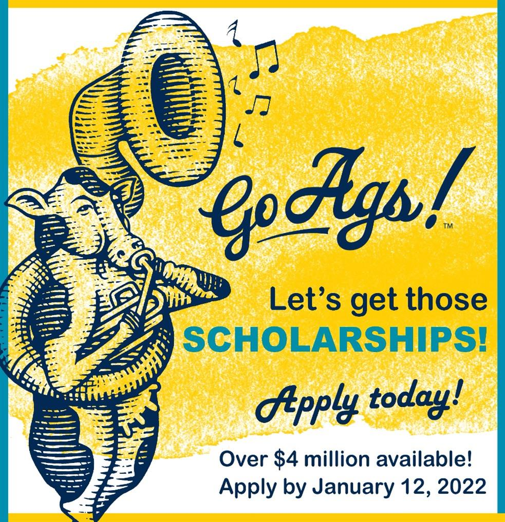 Sit Down with Scholarships