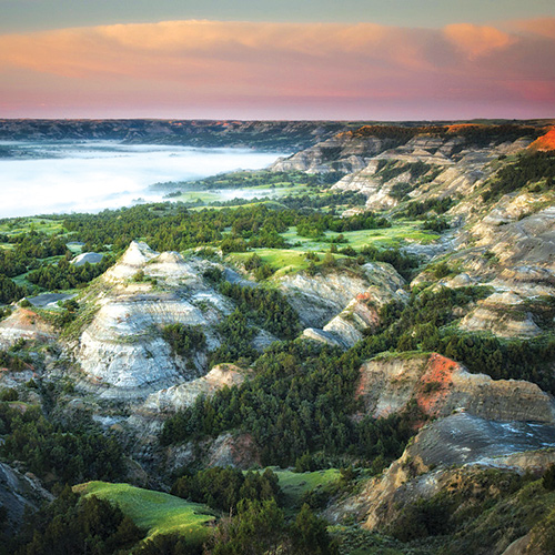 Theodore Roosevelt's North Dakota: Badlands, Bison, and the Making of a Conservationist