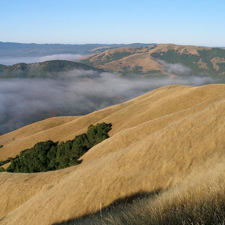 Loma Alta Evening Hike