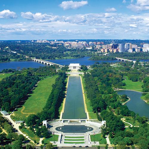 City of Trees: Washington, D.C.
