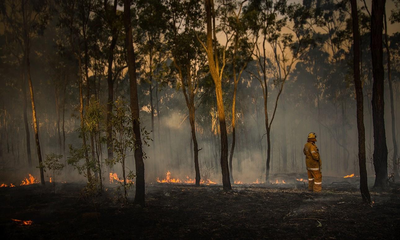 Bushfire relief ticker-tape parade