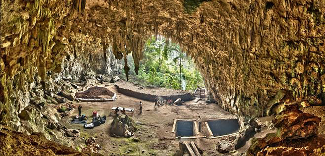 """HOT Topic: Homo floresiensis: The """"Hobbits"""" of Human Evolution"""