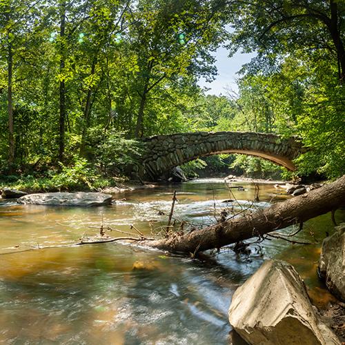 Rock Creek Park: A Virtual Exploration