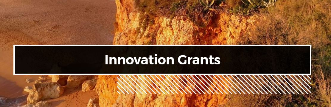 EarthLab Innovation Grants Bothell Info Session