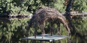 Nature Rx: Public Art in the Arboretum