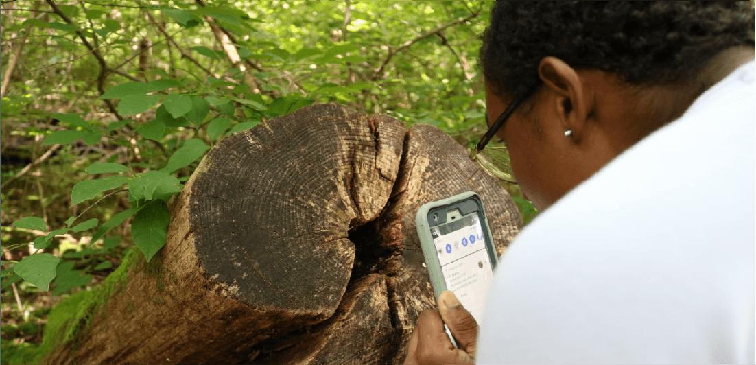Historia Natural en Casa: Biodiversidad en tu vecindario
