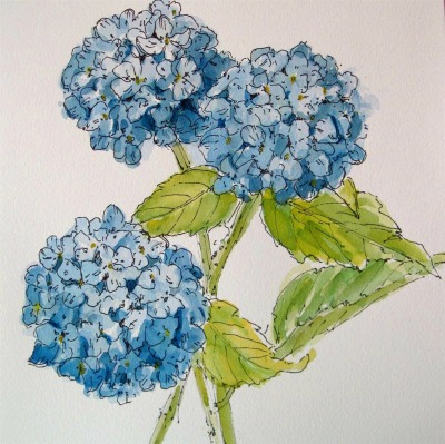 SOLD OUT - Botanical Sketching In Ink and Watercolor