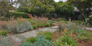 Nature Rx: Hip Habitats - New Insights for Designing a Garden for Biodiversity