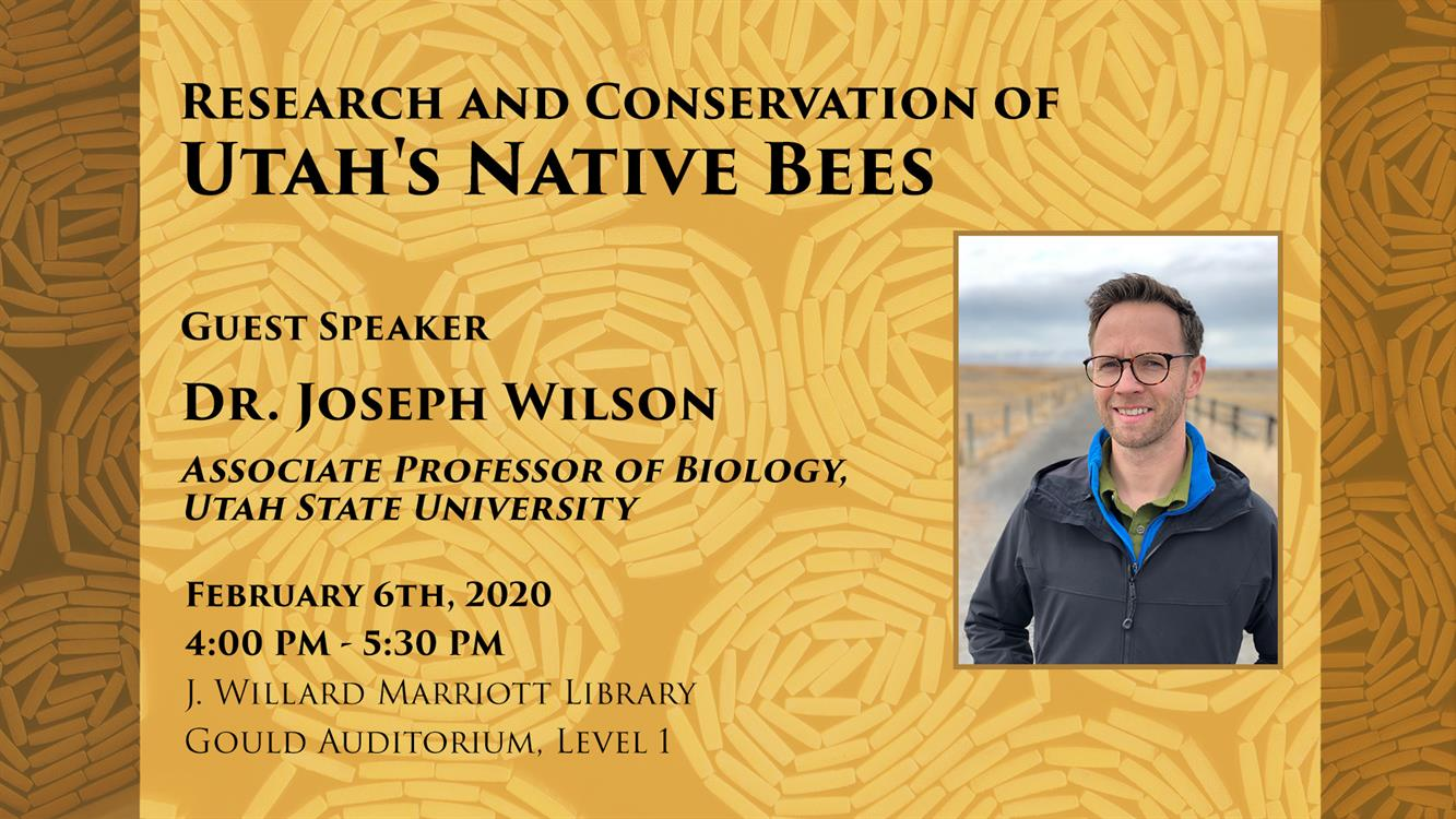 Research and Conservation of Utah's Native Bees