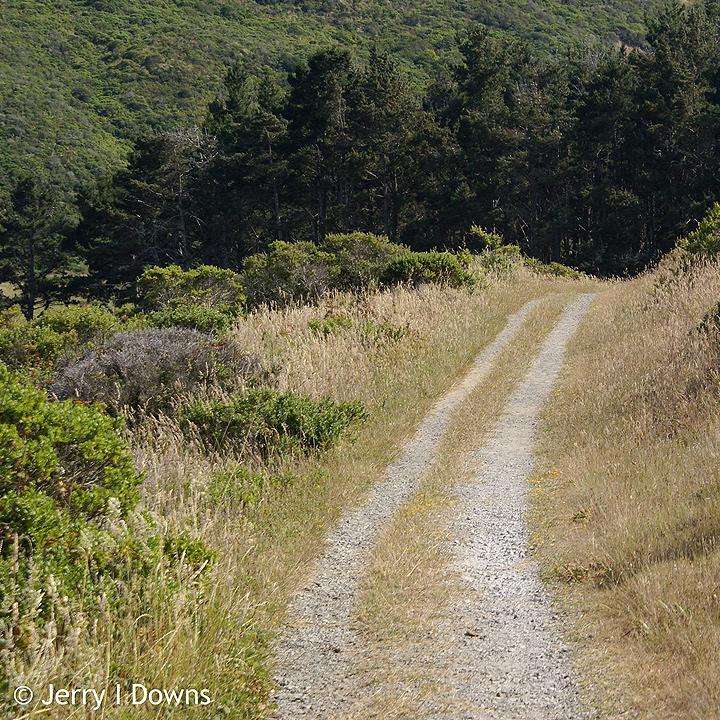 The Estero Trail