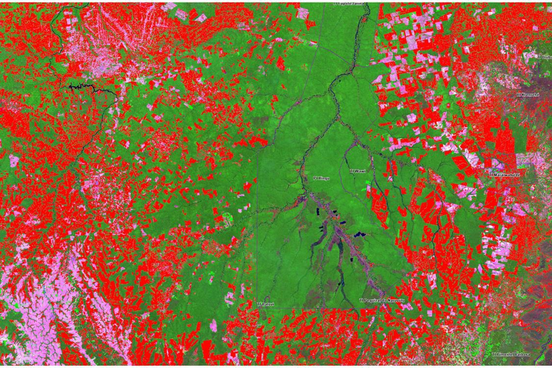 Environmental and Climate Science Under Attack: What is Happening in the Amazon?