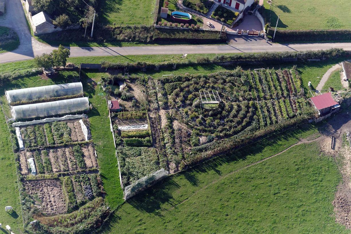 Basics of Permaculture Design (online)