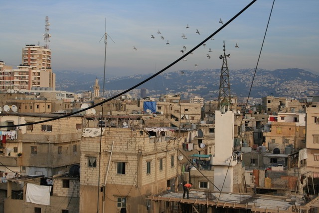 The Wings of Desire or The Sky over Shatila: Precarity, Hope, and Gender among Palestinian Refugee Young Men in Lebanon