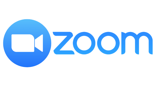 Zoom logo 2