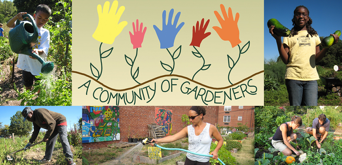 A Community of Gardeners (Film Screening and Q&A Discussion)