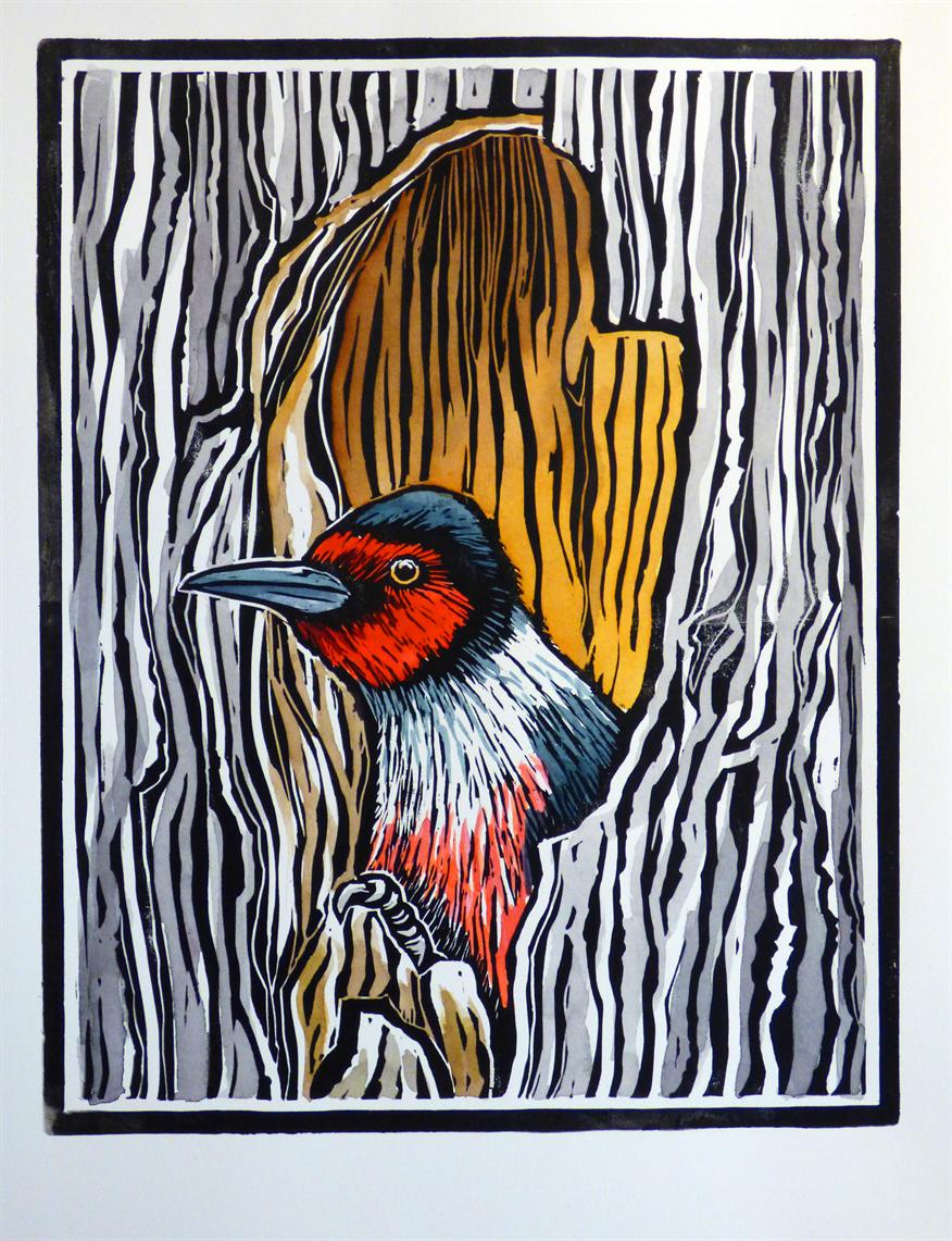 events university of washington botanic gardens