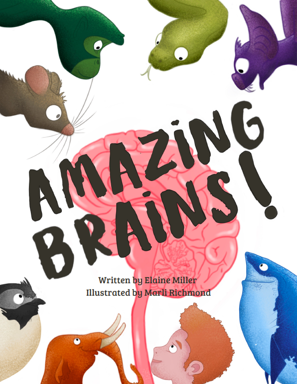 "Video Webinar for Families: Natural History at Home - ""Amazing Brains!"""