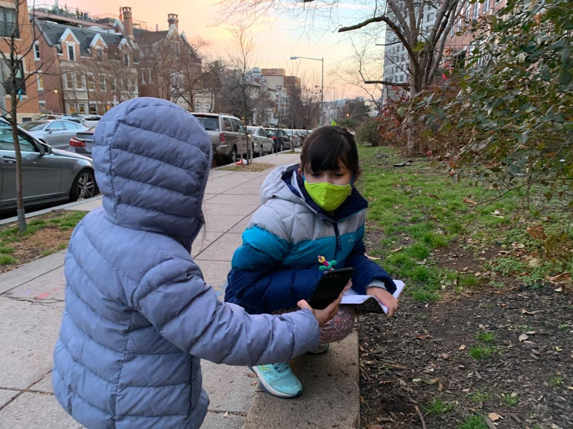 Video Webinar for Families: Natural History at Home - Neighborhood Naturalists