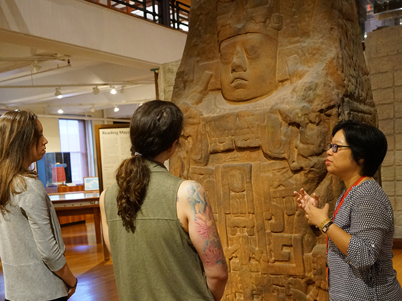 Highlights Tours by Harvard Student Guides